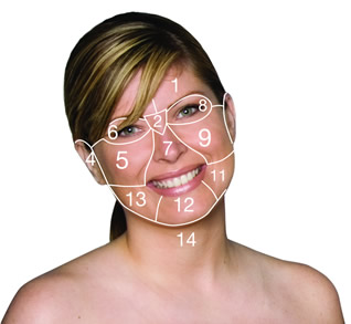 Renskin Health - Face Mapping